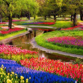 garden-desktop-wallpaper_090702682_195