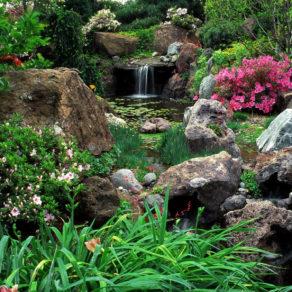 garden-wallpaper-16-photos-3