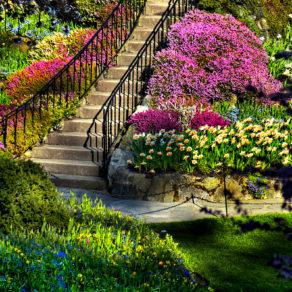 3622_garden